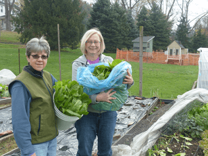 Sister Lyn Szymkiewicz and volunteer Alice Valoski holding bundles of freshly harvested vegetables